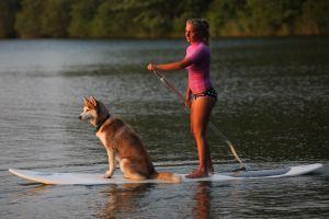 It is a dog on a surf board, what's not to like?